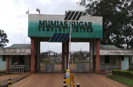 Wakulima eneo la Mumias Wapongeza mchakato wa kwenye bunge la seneti